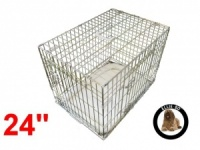 24 Inch Ellie-Bo Deluxe Small Dog Cage in Gold