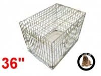 36 Inch Ellie-Bo Deluxe Large Dog Cage in Gold