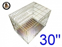 30 Inch Ellie-Bo Standard Medium Dog Cage in Gold