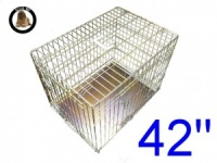 42 Inch Ellie-Bo Standard XL Dog Cage in Gold