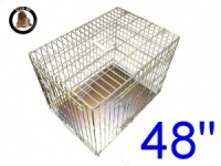 48 Inch Ellie-Bo Standard XXL Dog Cage in Gold